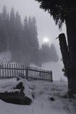 Het landschap van het maanlicht Stock Afbeelding