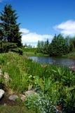 Het Landschap van het meer Royalty-vrije Stock Afbeeldingen