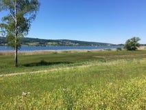 Het landschap van het meer Stock Afbeelding