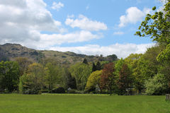 Het landschap van het meerdistrict met weelderige groene bomen en weiden Royalty-vrije Stock Afbeeldingen