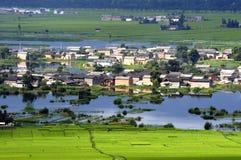 Het landschap van het moerasland Royalty-vrije Stock Afbeelding