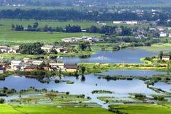 Het landschap van het moerasland Royalty-vrije Stock Foto's