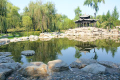 Het landschap van het park Royalty-vrije Stock Foto's