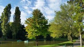 Het landschap van het park Stock Foto's