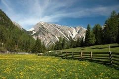 Het landschap van het platteland Royalty-vrije Stock Foto's