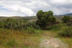 Het landschap van het platteland in Peru Royalty-vrije Stock Afbeelding