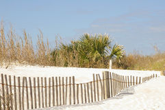 Het landschap van het strand Stock Afbeeldingen