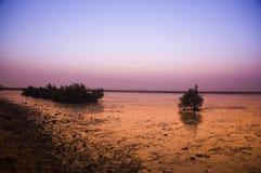 Het landschap van het strand met bij nacht Stock Foto's