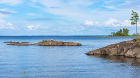 Het Landschap van het Valaameiland met zeemeeuwen Stock Foto's