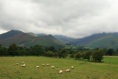 Het landschap van heuvels stock fotografie