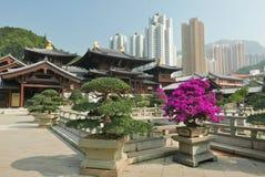 Het Landschap van Hongkong stock afbeeldingen