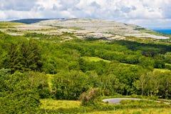 Het Landschap van Ierland royalty-vrije stock foto