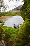 Het landschap van Ierland Stock Fotografie