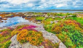 Het landschap van Ierland hdr stock foto's