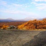 Het landschap van IJsland stock foto