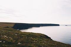 Het Landschap van IJsland van een klip royalty-vrije stock foto's