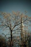 Het landschap van Istambul Royalty-vrije Stock Afbeeldingen