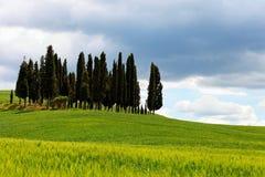 Het landschap van Italië, Toscanië kan binnen Royalty-vrije Stock Foto's