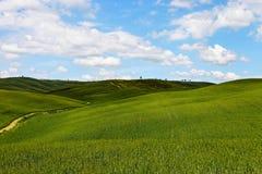 Het landschap van Italië, Toscanië kan binnen Stock Foto's