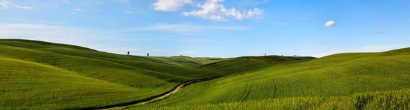 Het landschap van Italië, Toscanië kan binnen Royalty-vrije Stock Foto