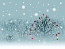 Het landschap van Kerstmis met ingesneeuwde bomen Stock Fotografie