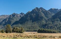 Het landschap van knoppenvlakten in het Nationale Park van Fiordland, Nieuw Zeeland Royalty-vrije Stock Afbeelding