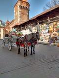 Het landschap van Krakau Stock Afbeelding