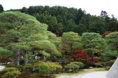 Het Landschap van Kyoto Stock Afbeeldingen