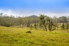 Het Landschap van La Fortuna stock fotografie