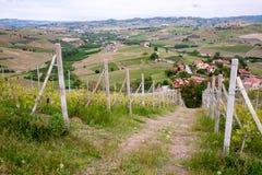 Het landschap van Langhewijngaarden dichtbij Barolo in de lente Wijnbouw, Piemonte, Italië, Unesco-erfenis Dolcetto, Barbaresco-w royalty-vrije stock afbeeldingen