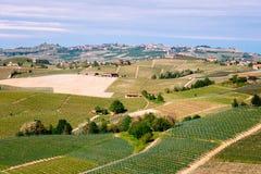 Het landschap van Langhewijngaarden dichtbij Barolo in de lente Wijnbouw, Piemonte, Itali?, Unesco-erfenis Dolcetto, Barbaresco-w stock foto's
