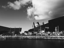 Het landschap van Liverpool stock fotografie