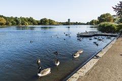 Het landschap van Londen met Serpentine Lake Stock Afbeeldingen