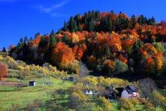 Het landschap van Maramures Stock Fotografie
