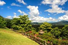 Het Landschap van Mauritius royalty-vrije stock fotografie