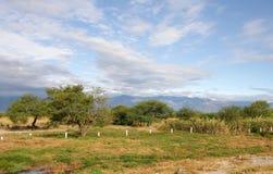 Het landschap van Mexico royalty-vrije stock foto's