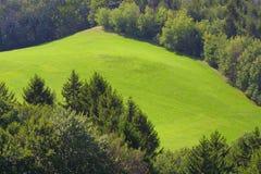 Het Landschap van Montain Royalty-vrije Stock Foto's