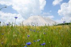 Het Landschap van Monte Kali of Kalimandscharo-in Heringen Duitsland royalty-vrije stock afbeeldingen