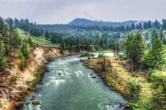 Het landschap van Nationaal Park Yellowstone Stock Afbeelding