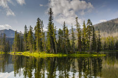 Het landschap van Nationaal Park Yellowstone Stock Fotografie