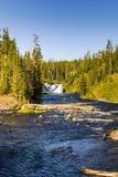 Het landschap van Nationaal Park Yellowstone Royalty-vrije Stock Foto's