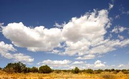 Het landschap van New Mexico Stock Afbeelding