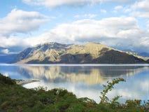 Het landschap van Nieuw Zeeland Stock Afbeelding