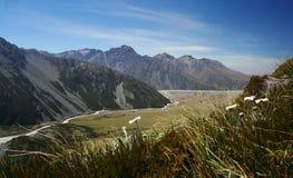 Het landschap van Nieuw Zeeland stock afbeeldingen