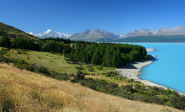 Het landschap van Nieuw Zeeland met Onderstel Cook op achtergrond stock fotografie