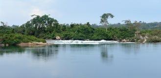 Het landschap van Nijl van de waterkantrivier dichtbij Jinja in Oeganda Stock Afbeeldingen