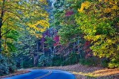 Het landschap van Noord-Carolina van de steenberg tijdens de herfstseizoen royalty-vrije stock afbeelding