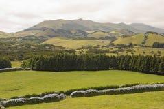 Het landschap van Pastrue, Sao Jorge Royalty-vrije Stock Fotografie