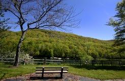 Het Landschap van Pennsylvania Royalty-vrije Stock Afbeelding
