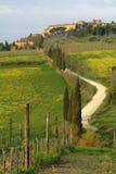 Het landschap van Pienza Royalty-vrije Stock Foto
